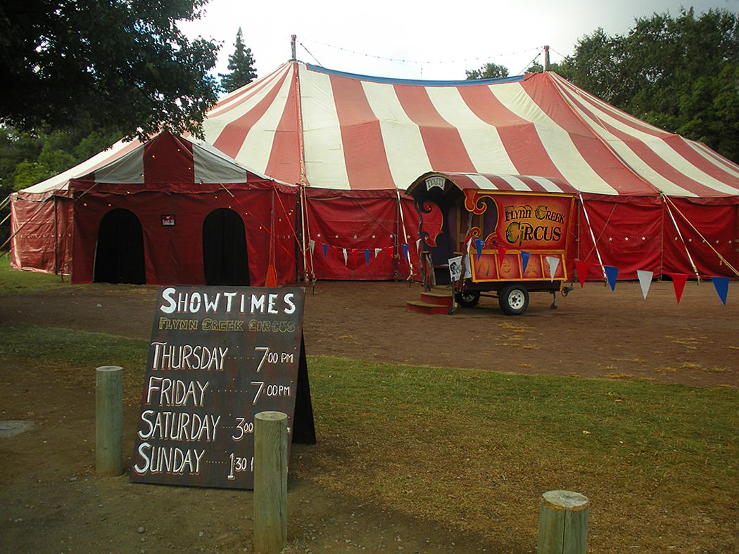 Image result for flynn creek circus
